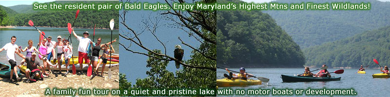Kayaking trip and eco tours in Maryland and Deep Creek Lake